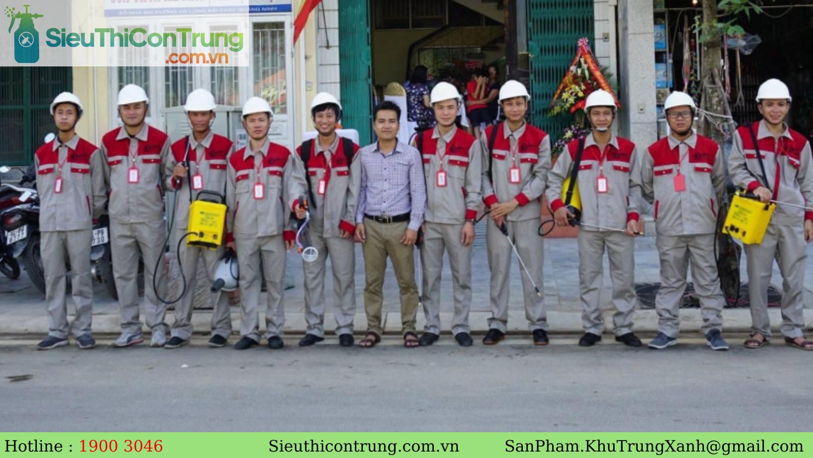 THAM KHẢO 24 công ty dịch vụ diệt mối tận gốc tại TP.HCM